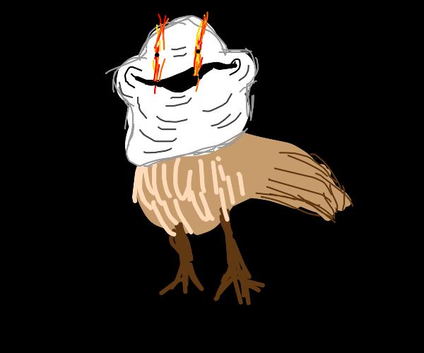 Nightingale Trolling