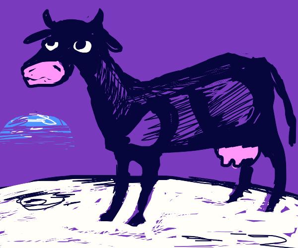 cow in da moon