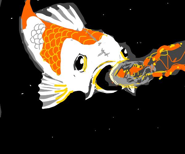 Koi fish eats a meteor