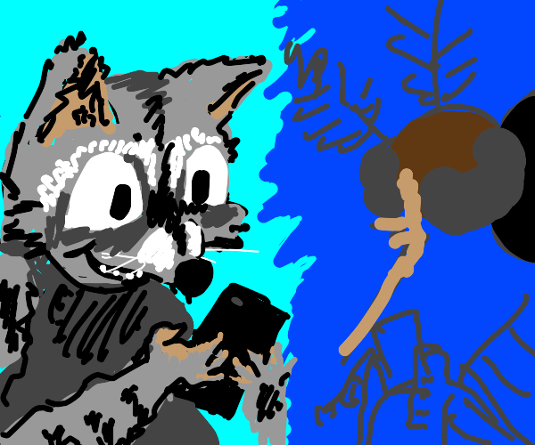 Raccoon and mosquito texting