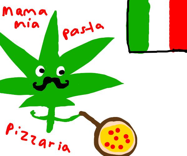 Italian weed