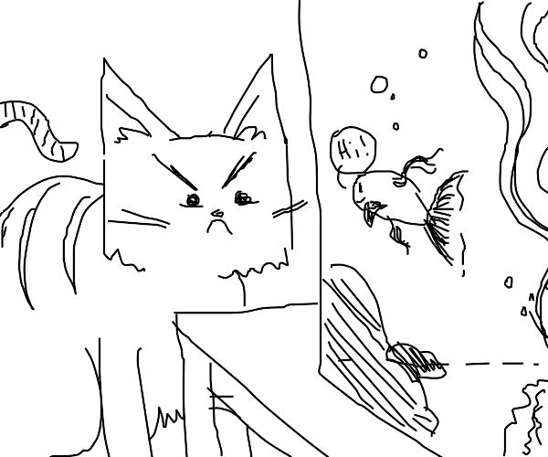 Cat hates fish