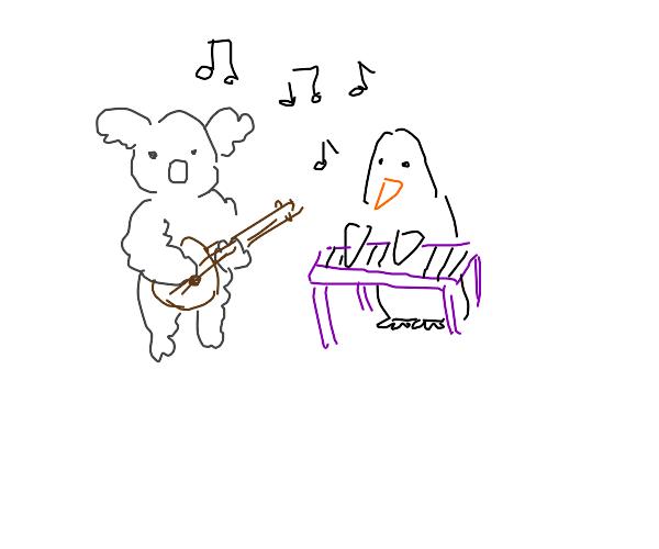 Koala plays banjo, penguin plays keyboard