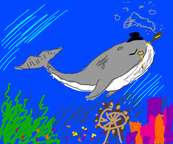 old whale