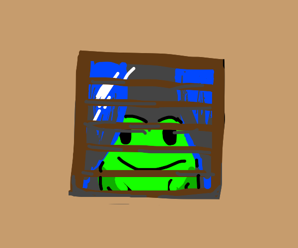 frog and a window