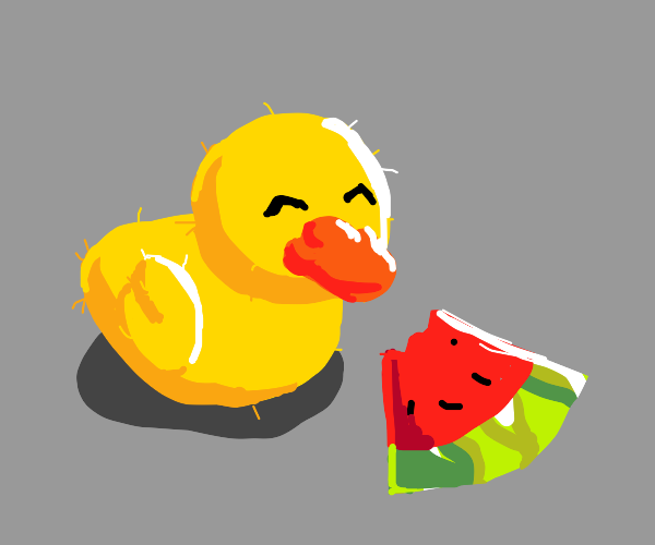 chick eating watermelon