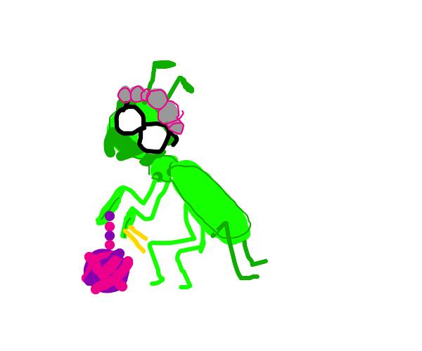 Grandma mantis?
