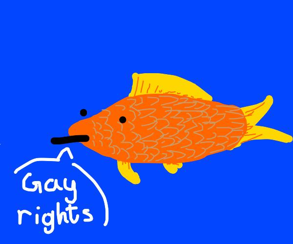 fish says gay rights
