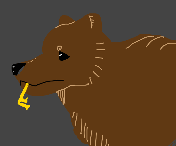 Bear with a key