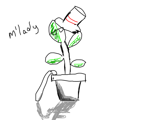 OMG! A plant with a hat! Ngl he drippin tho