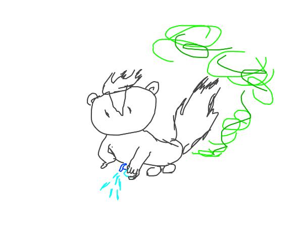 A skunk spraying