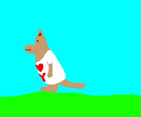 Kangaroo wearing a T-Shirt