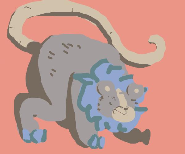 a lion bear rat