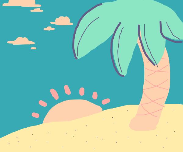 Beach with a tree
