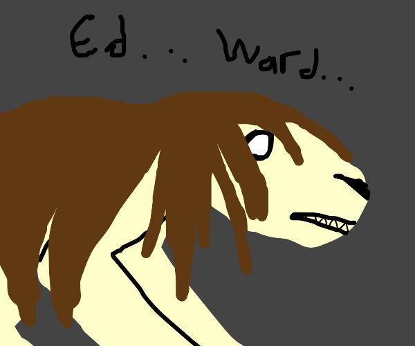 ed...ward... THE FULLMETAL ALCHEMIST :)