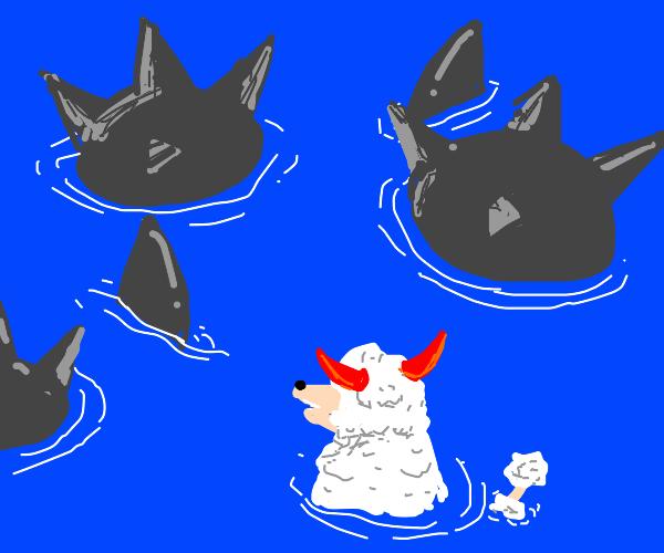a devil poodle avoiding a shark and a bomb