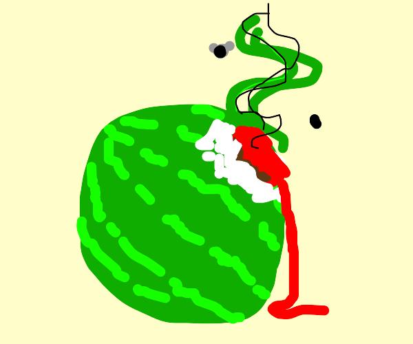 Moldy Watermelon