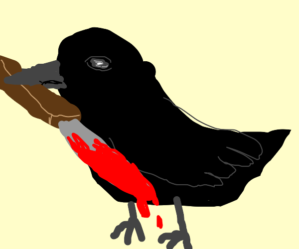 Crow... Why do you have that bloody knife??
