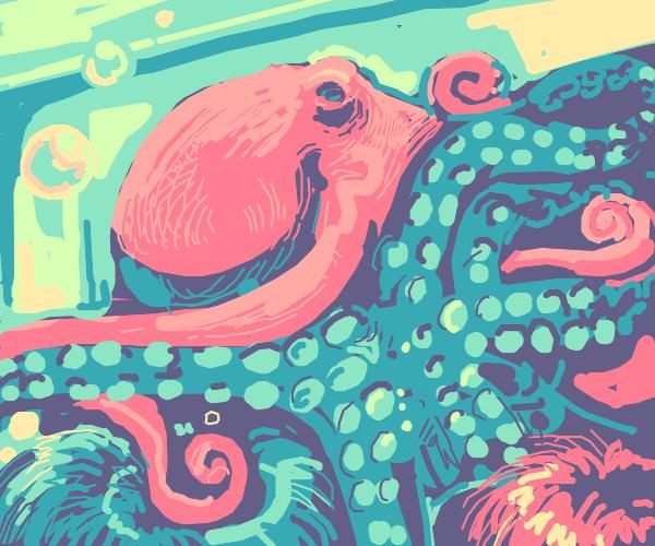 Octopus on tank