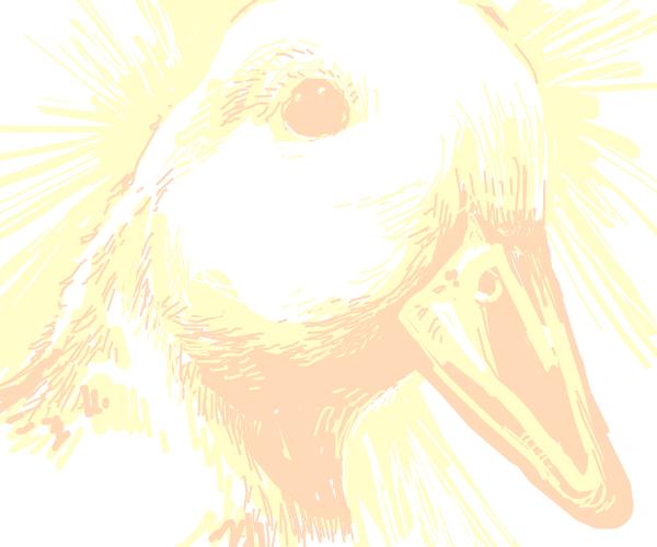 Eternal quack