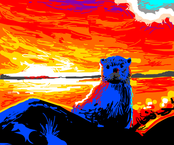 otter with sunset