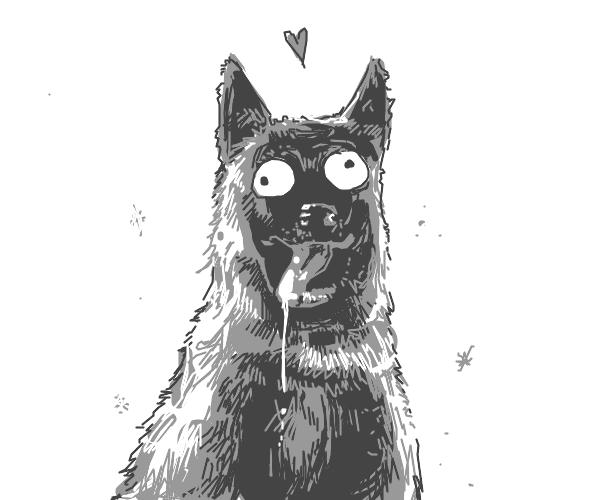 uwu dog