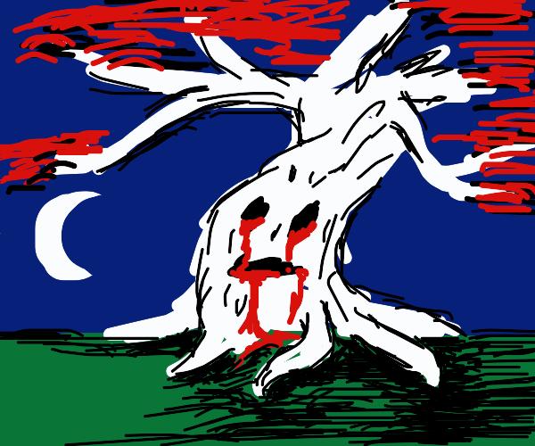 weeping bloody birch