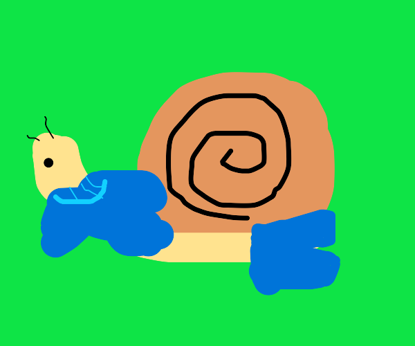 Snail wearing clothes