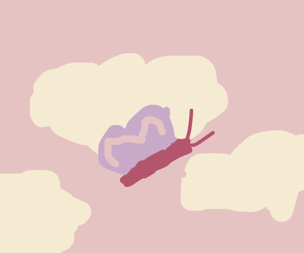 Butterfly in the clouds