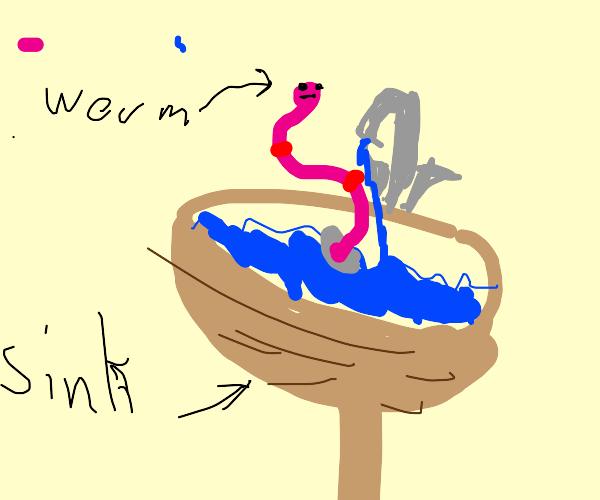 twisty worm falls down wooden sink