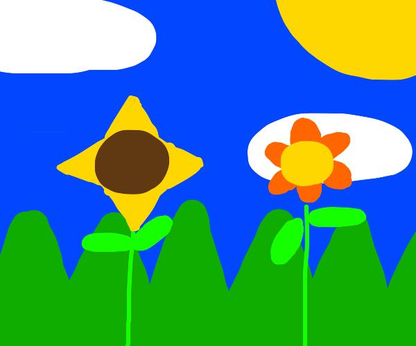 abstract art (flowers/grass)