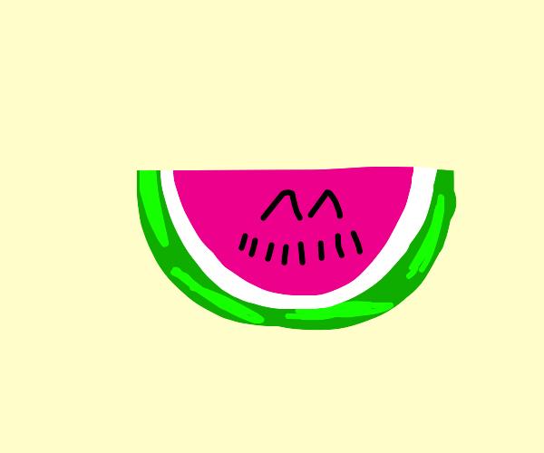 smiling watermelon