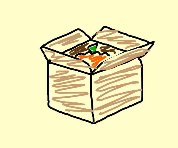 pumpkin in box