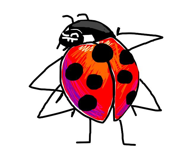 Sexy lady bug portrait