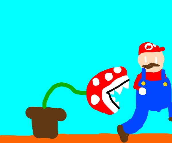 Piranha plant is gonna eat Mario