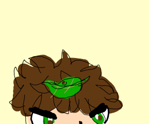 Boy upset about leaves atop his head