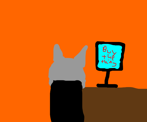 A kitty looking at ads