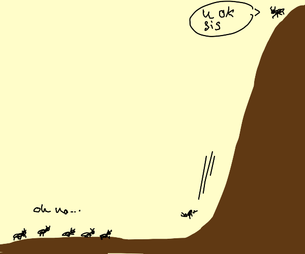 Ant falling down a hill