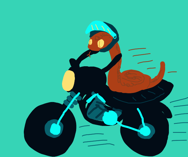 Snake on a motorcycle