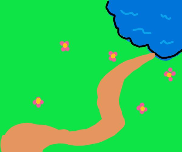 a trail to a lake