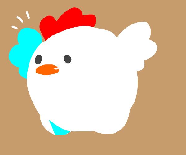 Cute round chicken