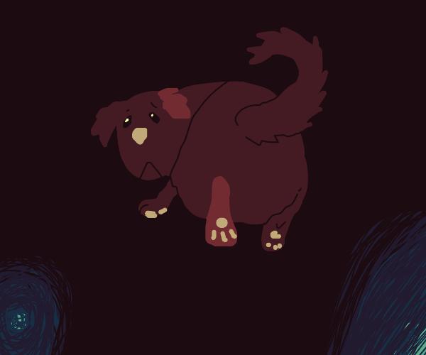 Saddest fluffy eared pooch named AJ.