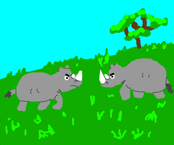 Rhinoceros Fighting