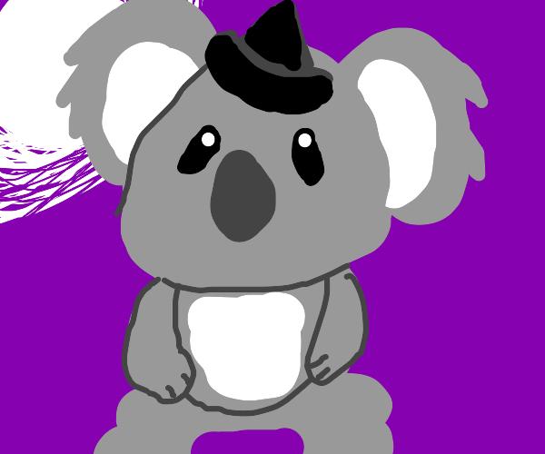 Spooky Koala