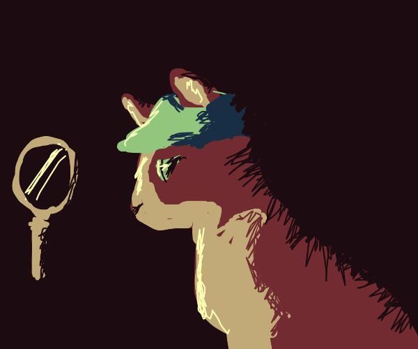 Cool Cat Detective