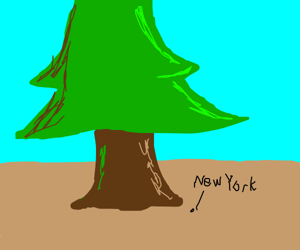 Thicc coniferous tree