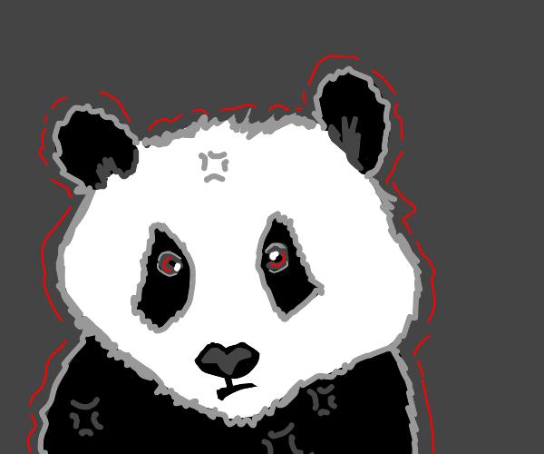 Salty Panda