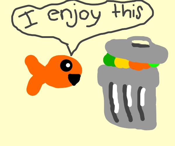 Fish enjoys trash