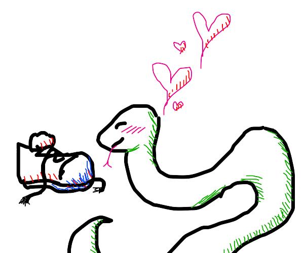 Snake loves a shoe