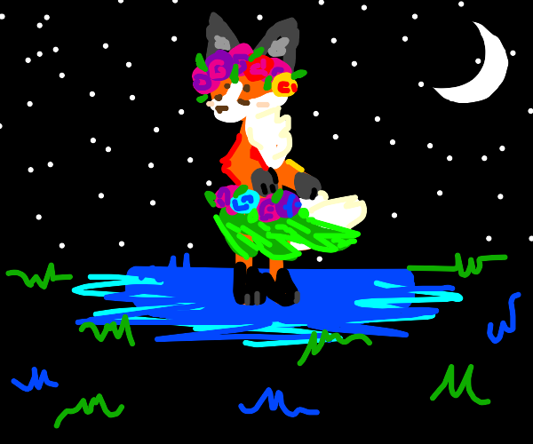 fox aloha dancer at night